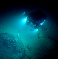 Scientists caught the deepest-dwelling fish in the ocean on camera over 5 miles below the surface