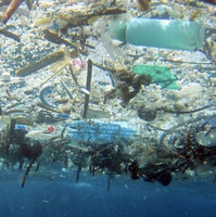 Major new report says amount of plastic in oceans is set to treble in a decade.